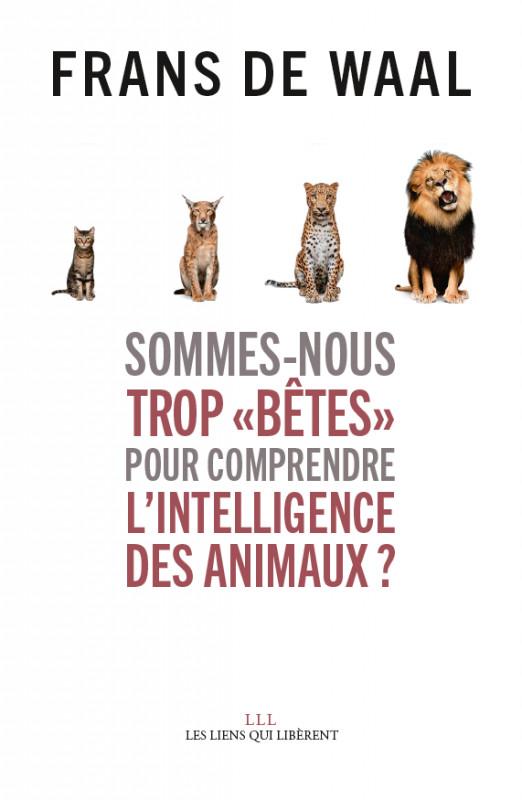 """Sommes-nous trop """" bêtes"""" pour comprendre l'intelligence des animaux ?"""
