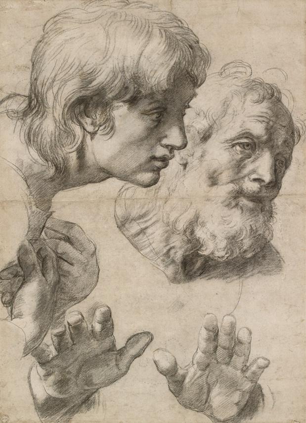 Raphael Santi . Têtes et Mains de Deux Apôtres