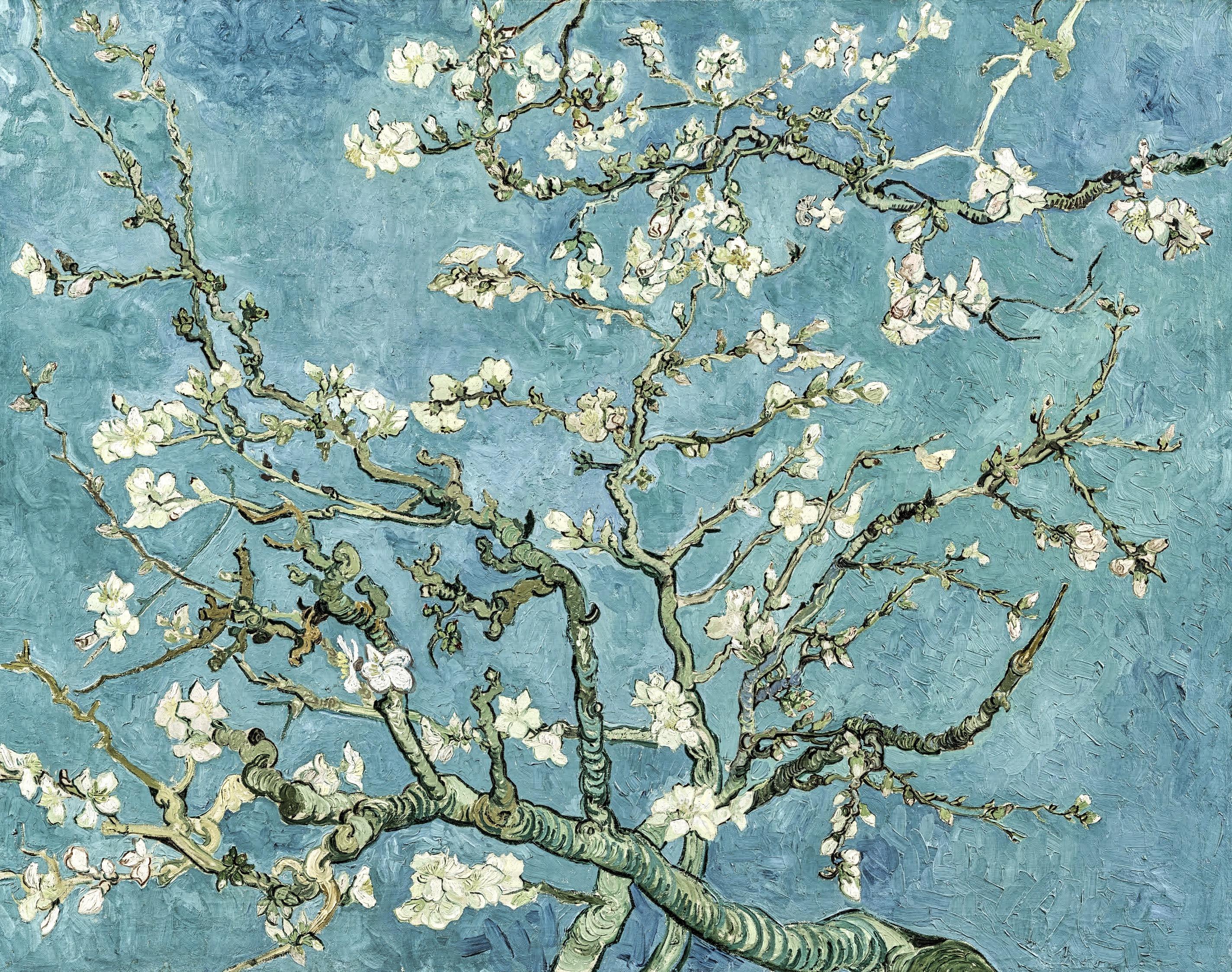 Vincent van Gogh Amandier en fleurs