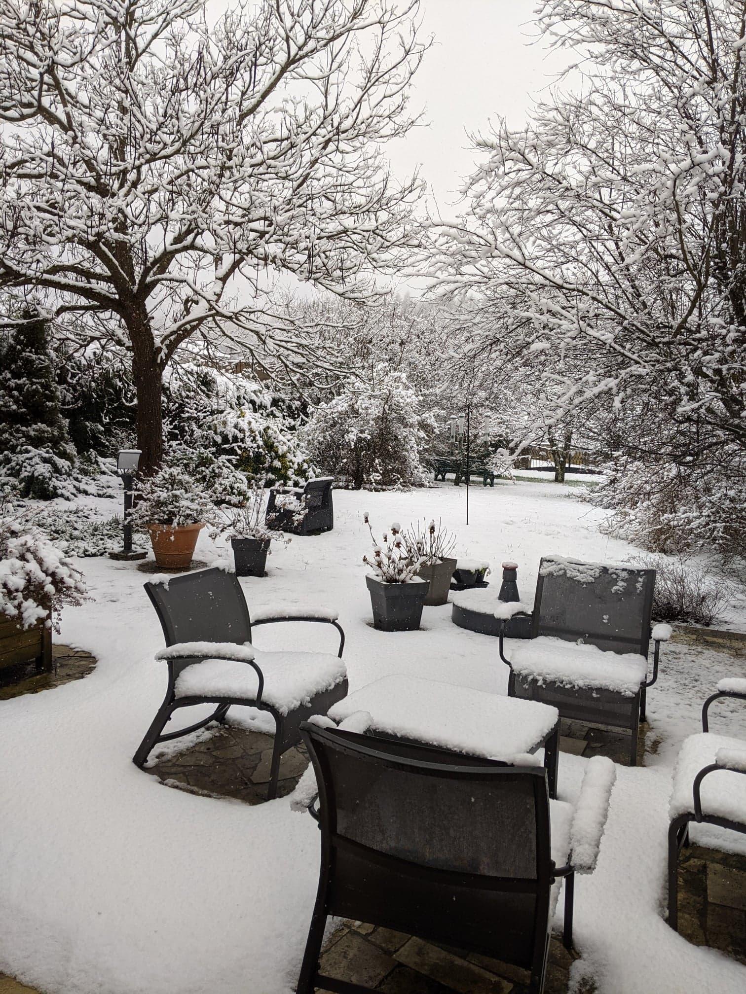 Jardin d'hiver, par  D.T.