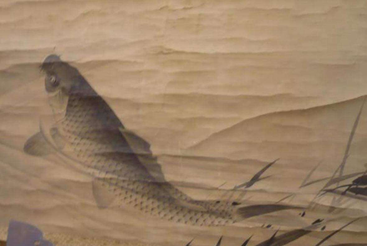 ROULEAU / KAKEMONO, PEINTURE / LAVIS SUR PAPIER FIGURANT UNE CARPE KOI Japon, période Bakumatusu, milieu du XIXe siècle.